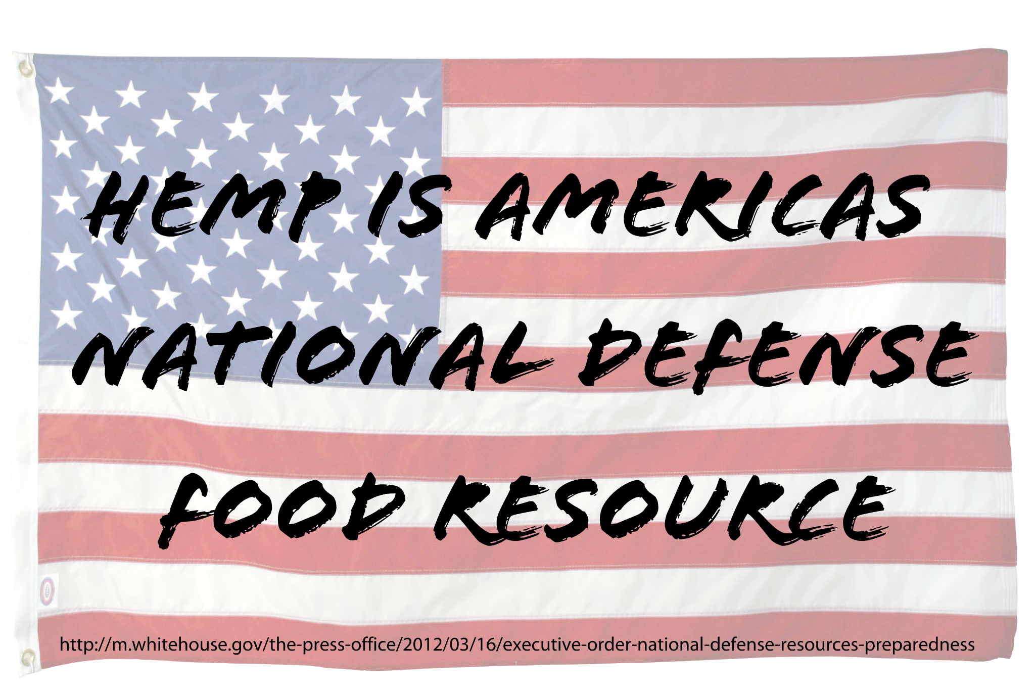 Hemp is Americas National Defense Food Resource